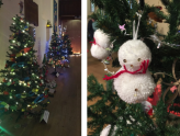 Christchurch Christmas Tree Festival 2019